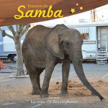Histoire de Samba