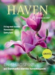 Haven Light 2016