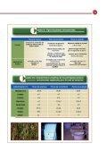 ALIMENTACION PARA LAPRODUCCION DE CARNE BOVINA (21032014) - Page 5