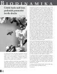 Revija Svitanje - Poletje 2013 - Page 4
