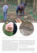 NAGELFLUH Frühjahr/Sommer 2016 - Das Naturpark-Magazin - Seite 7