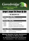 Europe's Largest Flat Breeze Up Sale - Page 3