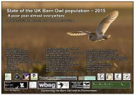 State of the UK Barn Owl population – 2015