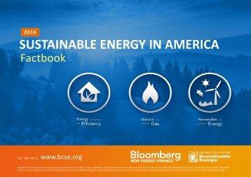 SUSTAINABLE ENERGY IN AMERICA