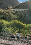 Minera Alumbrera - Page 6