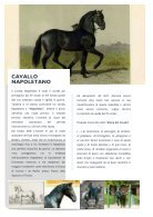 Rivista-Intelligo_bozza - Page 4