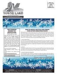Towne Lake January 2016