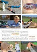 Teaser von Alpsommer & Viehscheid 2015 - Page 5