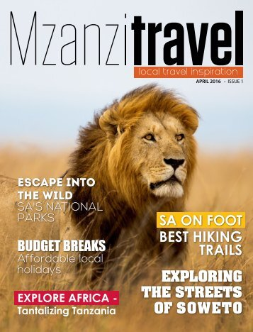 MZANZI TRAVEL - ISSUE 1