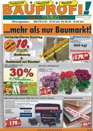 Bauprofi_KW14_Online