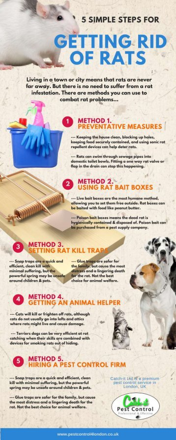 USEFUL METHODS FOR GETTING RID OF RODENT ISSUES
