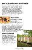Pollinators - Page 6