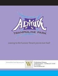 Altitude - 12 page manual