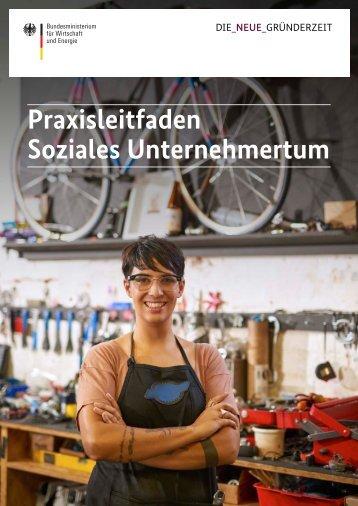 Praxisleitfaden Soziales Unternehmertum