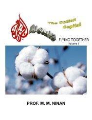 Flying Together 7-Gezirah