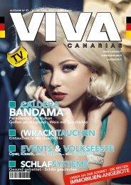 VIVA_97_online-AI
