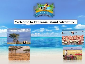 Welcome to Tanzania Island Adventure