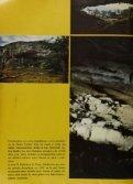 MUNDO DISNEY - Page 3