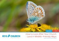 How to Look After Your Church Land in Wildlife-Friendly Ways