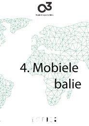 16 4 Mobiele balie (NL)