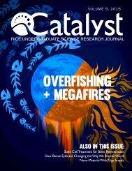 [Catalyst 2016] Final
