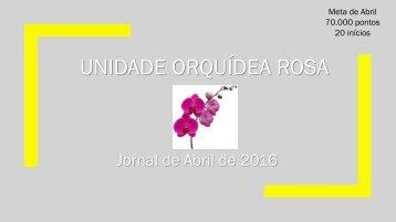 Jornal Orquídea Rosa. Edição: Abril de 2016