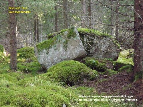 Vandring och mål  Gammal kultursten i och kring ett skogsparti  Sven-Inge Windahl  2016