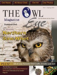 The Owl Eye Spring 2016