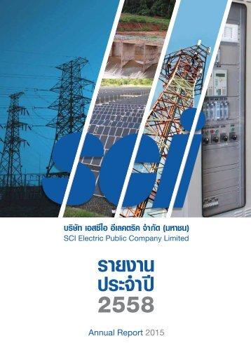 SCI Annual Report 2015