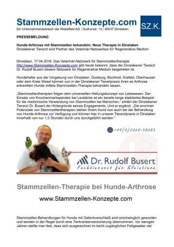 Hunde-Arthrose mit Stammzellen behandeln: Neue Therapie in Dinslaken