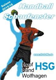 Handball Schaufenster 2015/16