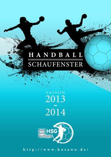 HSF_2013