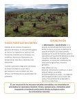 PROBLEMAS AMBIENTALES - Page 5