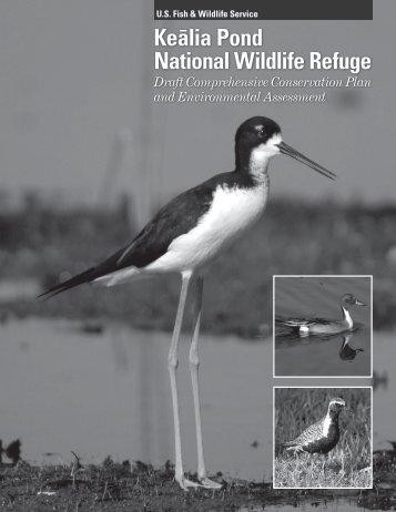 Kea¯lia Pond National Wildlife Refuge Draft Comprehensive ...