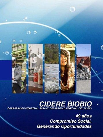 MEMORIA-CIDERE-BIOBIO-2014