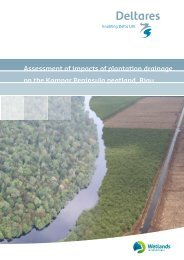 Plantation-Impacts-Kampar-Peatland-DELTARES-2015