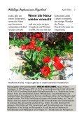 Siegerland - Frühlings-Impressionen - Seite 2
