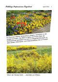 Siegerland - Frühlings-Impressionen - Seite 3