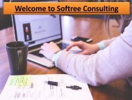 Welcome to Softree Consulting