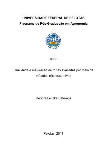 Tese_Debora_Leitzke_Betemps