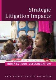 Strategic Litigation Impacts