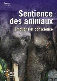 Sentience des animaux