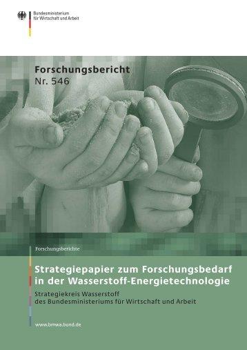 Strategiepapier zum Forschungsbedarf in der Wasserstoff ...