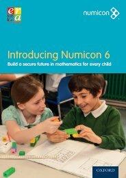 Introducing Numicon 6