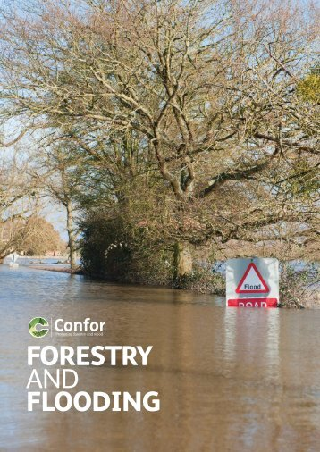 FORESTRY AND FLOODING