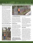 Forests - Page 2
