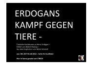 ErdogKarikKorr