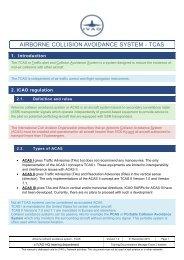 AIRBORNE COLLISION AVOIDANCE SYSTEM - TCAS
