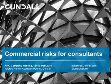 Commercial risks for consultants