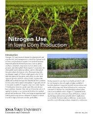 Nitrogen Use
